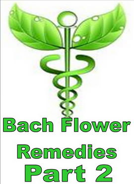 BACH FLOWER REMEDIES - PART 2