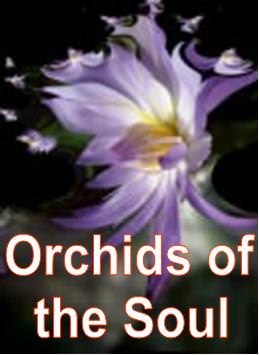 Orchids of the Soul
